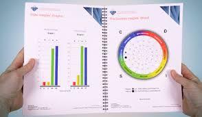 TSI Success Insights Grafiek en Wiel